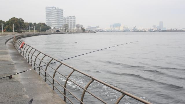 釣具買取専門店が魚のいない街中にあるのはなぜだ??